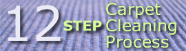 Learn more about the Steam-A-Way 12 Step Carpet Cleaning Process