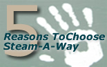 5 Reasons to Choose Steam-A-Way