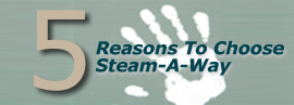 5 Reasons to use Steam-A-Way