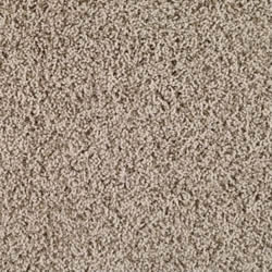 Polyester Carpet Example