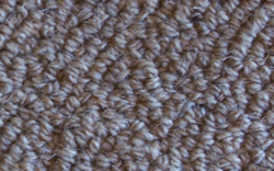 McKinley Tussock Wool Carpet cleaned by Steam-A-Way of Palm Beach